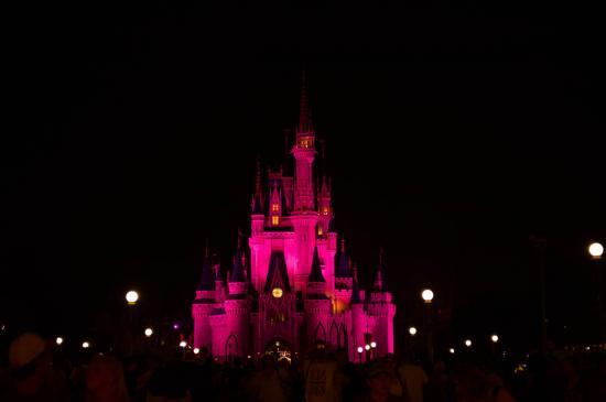 06 - Le château en rose