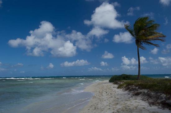 07 - Les Tobago Keys