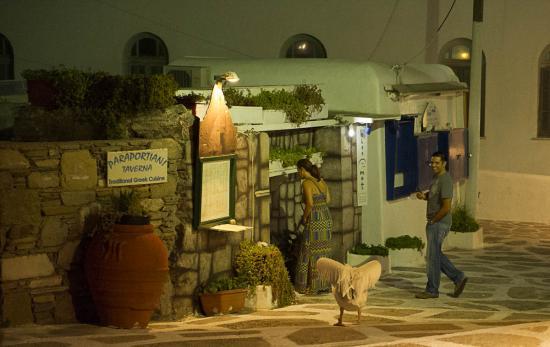 09 - Le fameux Pélican de Mykonos