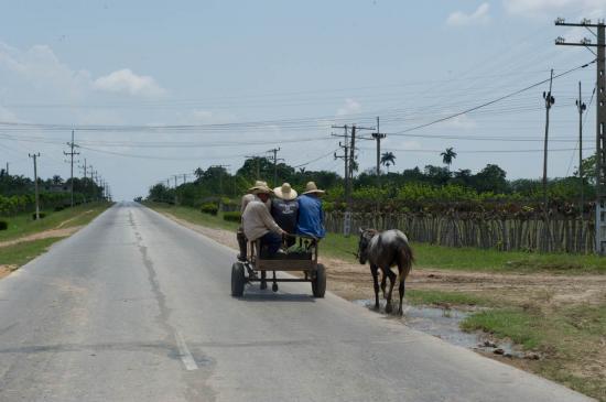 Carriole sur les routes