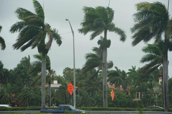 02 - Ca souffle dans le port de Miami