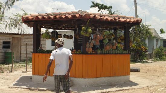 Un vendeur de fruits et légumes au bord de la route